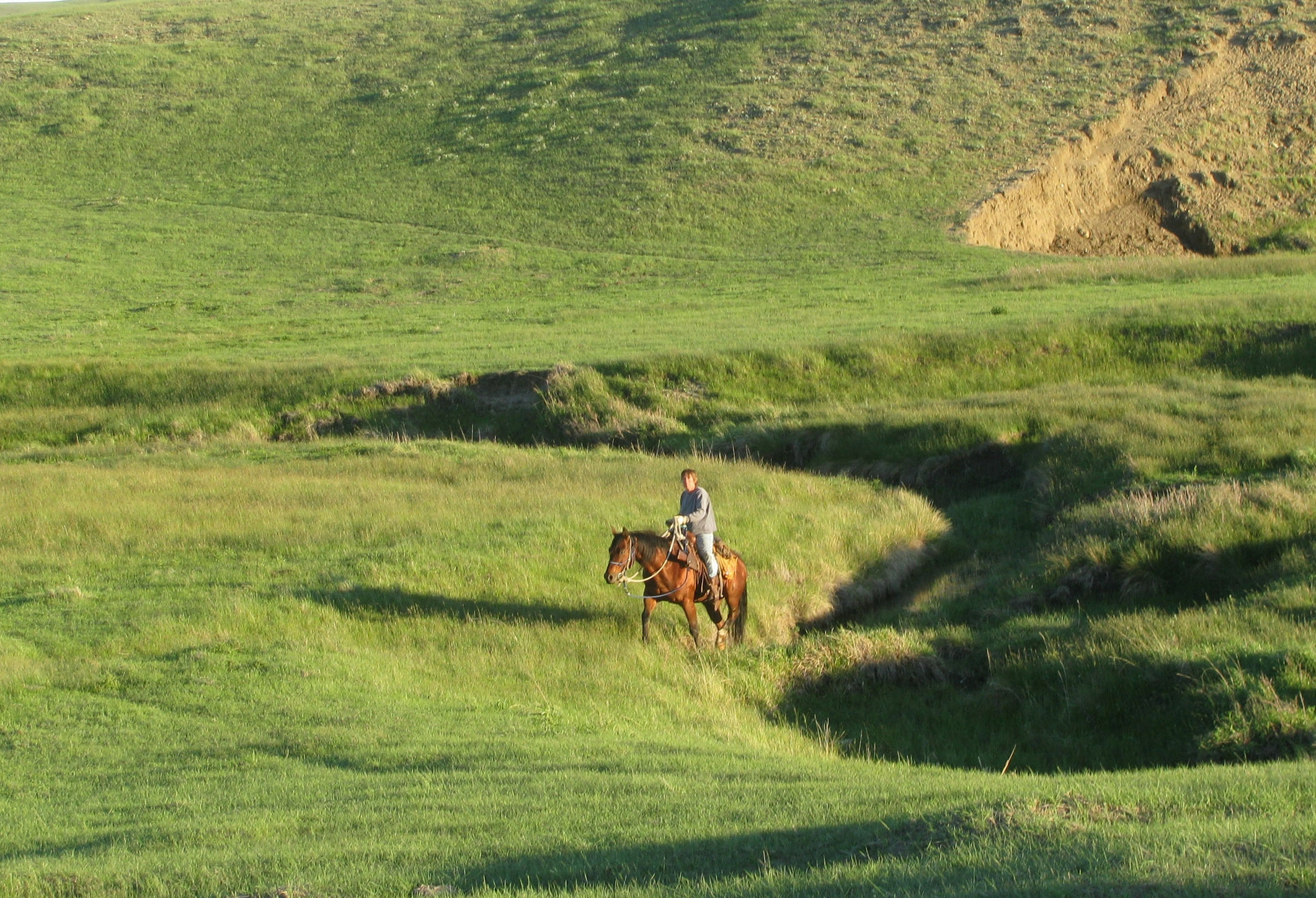 A Land of Grass Ranch, USDA and Montana State University